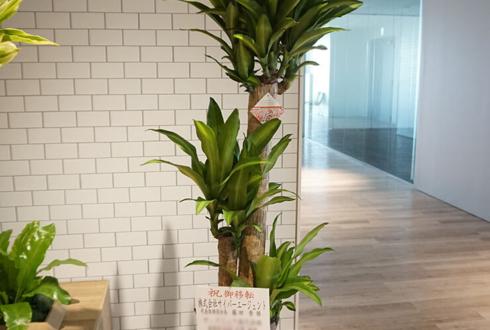 Abema Towers 株式会社サイバーエージェント様の移転祝いスタンド花・観葉植物
