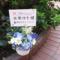 ShibuyaCross-FM 水原ゆき様の『水原ゆきのみなラジオ』お一人様放送祝い花