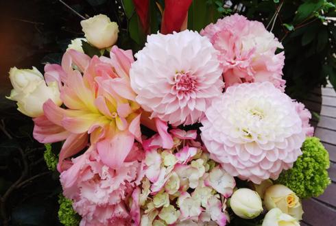 下北沢ARENA 星秀美様のヨッタイキオイイベント『星秀美・室田渓人 大解剖』祝い花