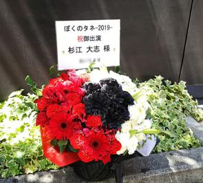 舞台 杉江大志様の「ぼくのタネ 2019」出演祝い花