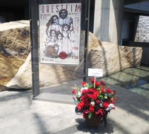 新国立劇場 音月桂様の舞台『オレステイア』出演祝い楽屋花