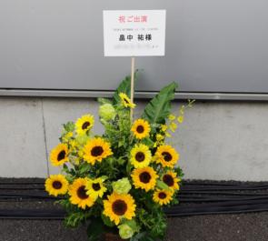 豊洲PIT 畠中祐様のライブ公演祝い花 ひまわりアレンジ