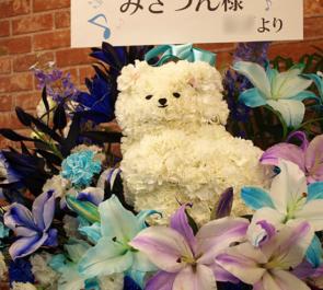 新宿MARZ みさつん様のハレトキドキワンマンライブ公演祝いポメラニアンモチーフフラスタ