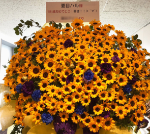 岩本町芸能社特設会場 夏目ハル様の誕生祭祝いひまわりスタンド花250本
