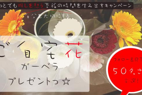 希望の花ガーベラプレゼント