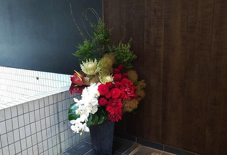 六本木Harvest Time様の自粛要請緩和営業再開に。開店祝い花