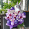 神咲バニラ様の誕生日祝い花 @秋葉原アニソンDJBAR『あるけみすと』