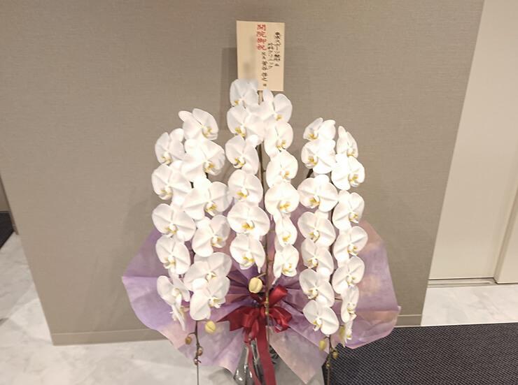 東京スポーツ&整形外科クリニック様の開院祝い胡蝶蘭 @豊島区上池袋