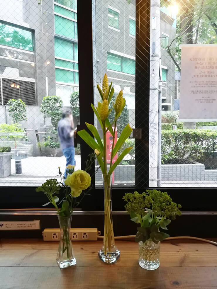 Webドラマ「喫茶ライフ」協力花 @WISE OWL HOSTELS SHIBUYA