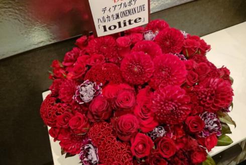 ディアブルボア ハルカ生誕ONEMAN LIVE 「Iolite」公演祝い花 @赤羽ReNY alpha