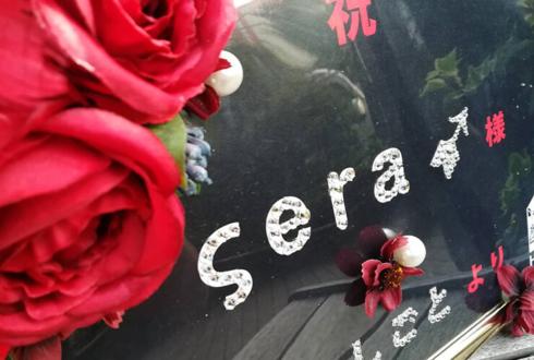 ςera➹さんライブ『音乞食』10.18池袋LIVE INN ROSAへ赤バラ花束企画、無料参加方法