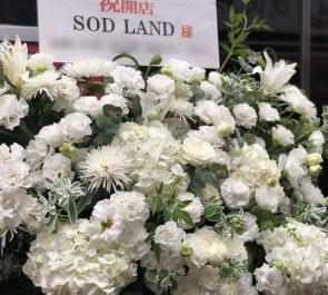 SOD LAND様の開店祝いアイアンスタンド花 @歌舞伎町