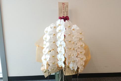 日本ディスク株式会社様のオフィス新設祝い胡蝶蘭 @西新宿プライムスクエア