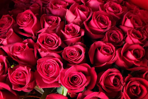 プロポーズに赤バラ花束108本 @レフェルヴェソンス L'Effervescence