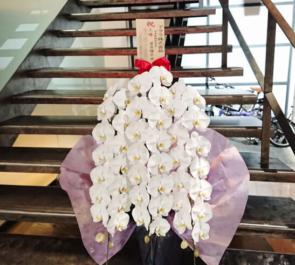 アララ株式会社様の上場祝い胡蝶蘭 @南青山