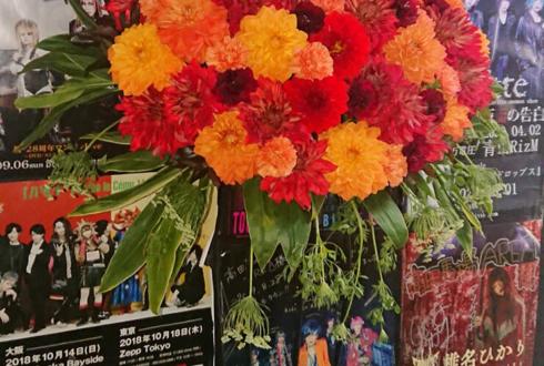 LIPHLICH 新井崇之様&小林孝聡様のBDライブ公演祝い猫足スタンド花 @高田馬場AREA