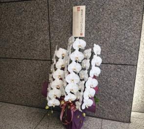 株式会社アップフロントクリエイト様の移転祝い胡蝶蘭 @西五反田