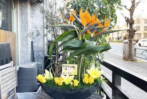 【 #月の光も雨の音も 】ご自宅での推し事に 松田岳様の舞台『忠臣蔵 討入・る祭』出演祝い花