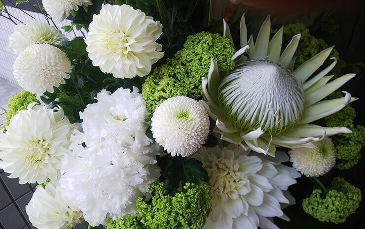 松木わかは様の舞台出演祝い籠スタンド花