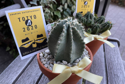 アガリスクエンターテイメント様の舞台『TOTYO2020』 -誰かが、聞いている- 配信公演祝い観葉植物 ミニサボテン