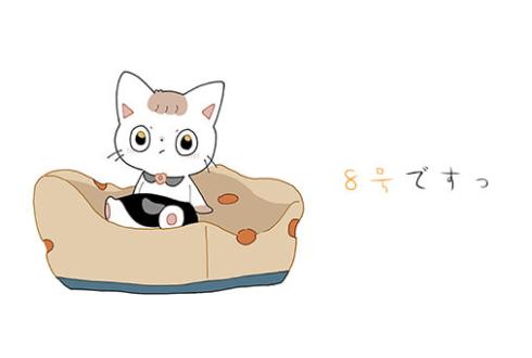 たねまき8号