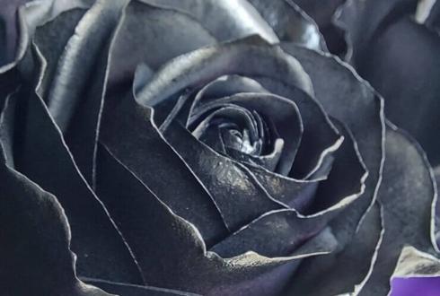 Crow様の無観客ライブ公演祝い黒バラ12本の花束 @沼袋Section9