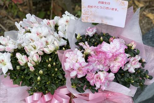 かみやど 萩田ここ様の誕生日祝い花 誕生花アザレアの鉢@TKP神田ビジネスセンター604