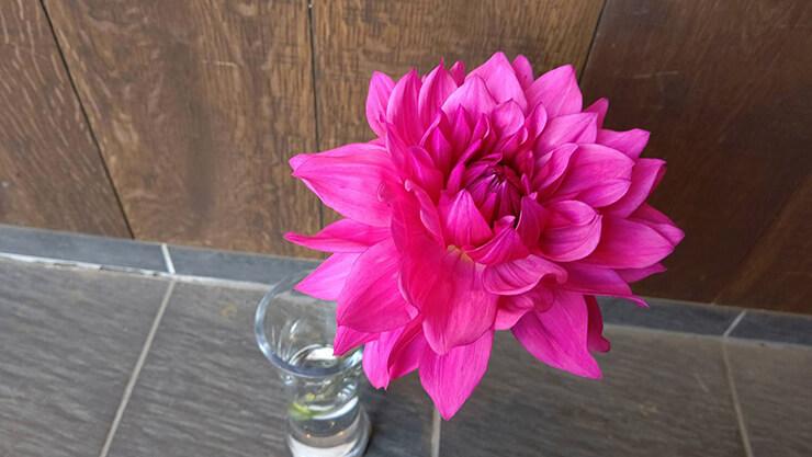 メキシカンレストランRUBIA様の開店祝い籠スタンド花 @渋谷スペイン坂
