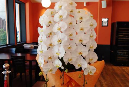 soft&bar Mi tiempo(ミ・ティエンポ)様の開店祝い胡蝶蘭 @芝浦