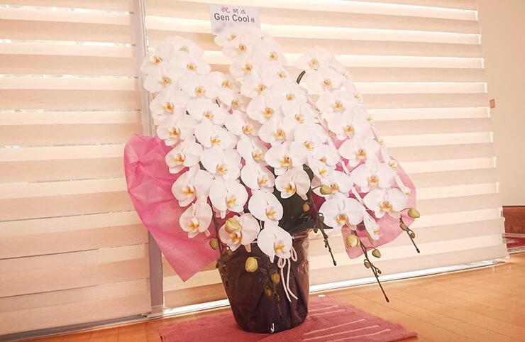Gen Cool様の開店祝い胡蝶蘭5本立 @新宿