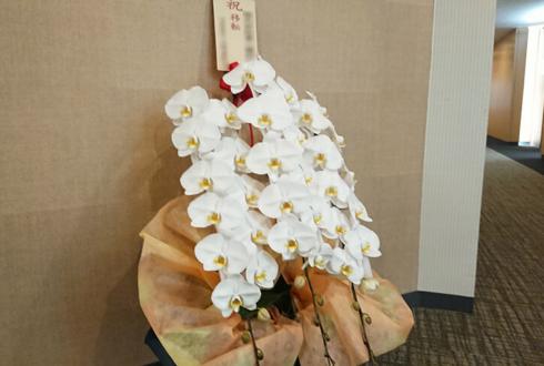 東京大気社サービス株式会社様の移転祝い胡蝶蘭 @西新宿