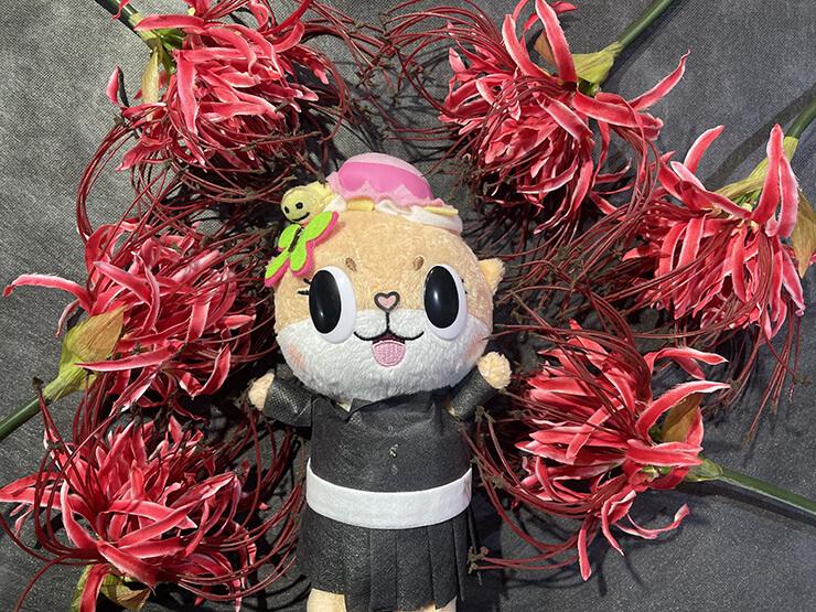ちぃたん☆鬼滅の刃 栗花落カナヲコスぬい撮り花の呼吸 終ノ型・彼岸朱眼
