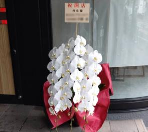 TORIUSAGI-酉兎-様の開店祝い胡蝶蘭 @西麻布