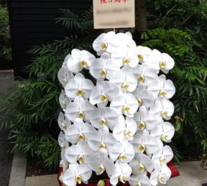 東麻布 天本様の5周年祝い胡蝶蘭 @港区東麻布