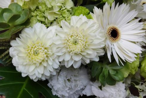 HERNO(ヘルノ)神戸店様の移転祝い花 @兵庫県神戸市