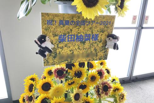 乃木坂46 柴田柚菜様のライブ公演祝いひまわりスタンド花2段 @マリンメッセ福岡