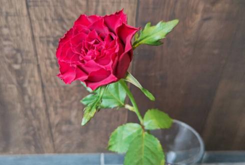 誕生日祝いに赤バラ花束29本 @レフェルベソンス/ L'Effervescence