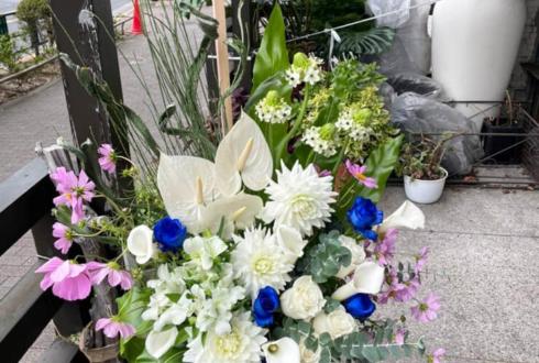 西沢5㍉様の個展開催祝い花 @とらのあな秋葉原店
