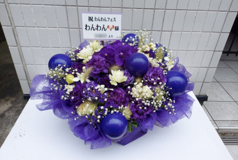 ばたんキュン わんわん様の生誕祭祝い花 @duo MUSIC EXCHANGE